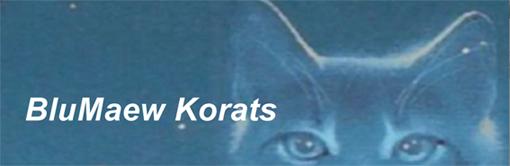 BluMaew-Korats-banner